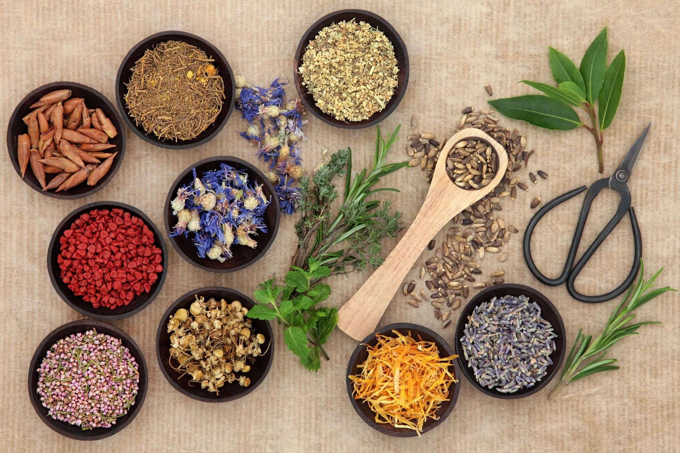 What You Need To Know About Herbs